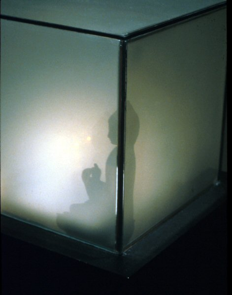 Jim Campbell, Shadow (for Heisenberg), 1993-1994