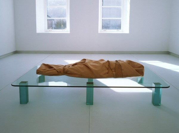 Catherine Richards, Shroud/Chrysalis 1, 2000